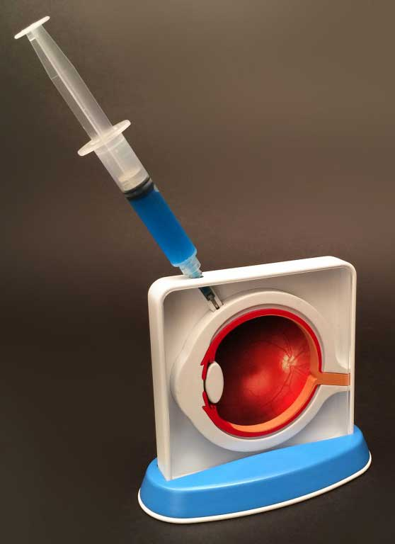 Bio Injection Eye Model